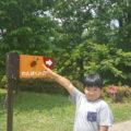小田原こどもの森公園わんぱくらんどでアスレチック