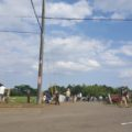 牧場の中心に幹線道路があるので歩行注意