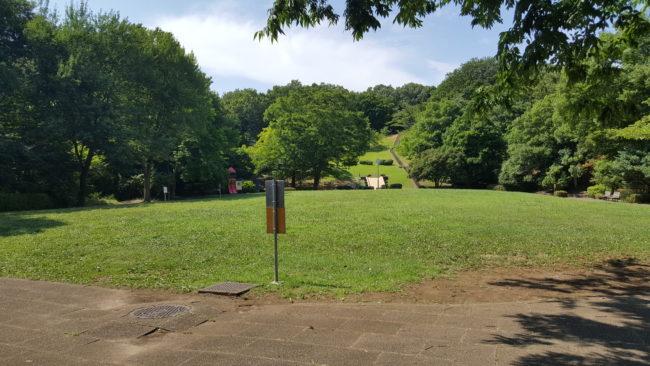 森林浴にもってこいの久保山公園