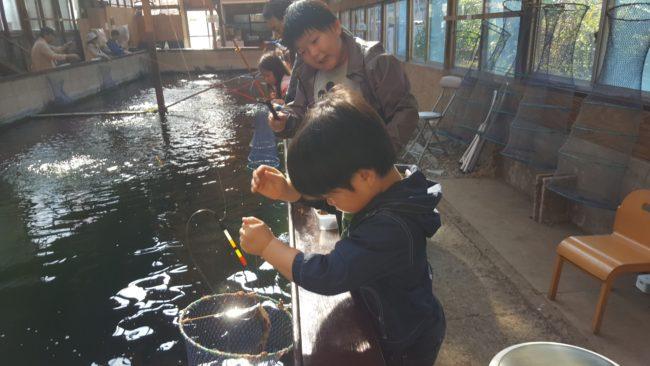 町田市 常盤つりぼりセンター 屋内池