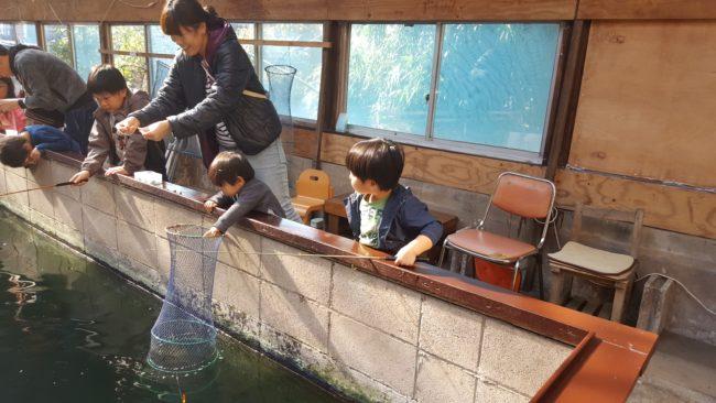 町田市 常盤つりぼりセンター 家族で釣りを楽しめる