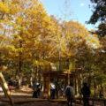 野山北公園 アスレチック