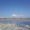 富士山と新幹線と富士川
