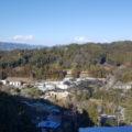 展望台から園内全景