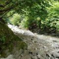 尾白川渓谷 自然の遊歩道