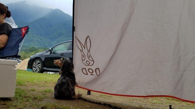 愛犬とキャンプinフレンドパークむかわ