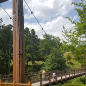 全長49.2m 森のわたり橋