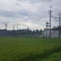 東武鬼怒川線 SL大樹
