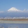 富士川河川敷 富士山