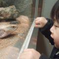 爬虫類館ではこんな写真も