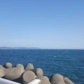 風が強かったけど海綺麗でしたね