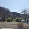 公園に入ると大池があります。