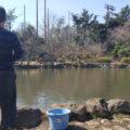モツゴやクチボソなどの小ぶりの魚釣りができるよ