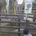 こども動物園もあるよ