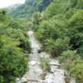 尾白川渓谷で川遊び